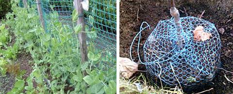 Mreže za oporo in zaščito vrtnin in drugih rastlin